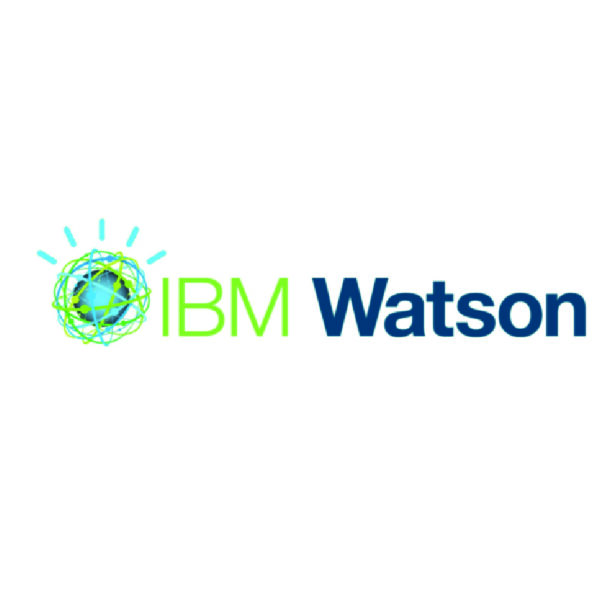 IBM - Watson Knowledge Catalog Logo